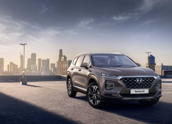 Hyundai Santa Fe Black&Brown